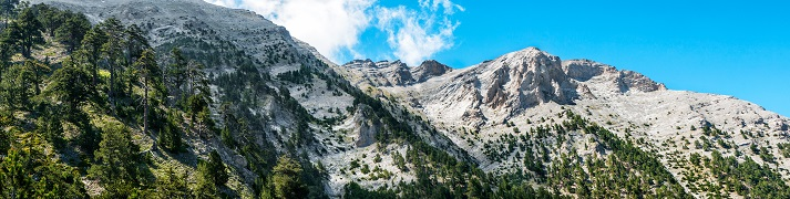 The History of Mt. Olympus Educational Resources K12 Learning